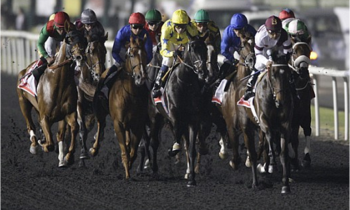 Dubai World Cup 2014 live on Channel 4 & Sky Sports