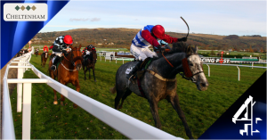 Cheltenham Open Meeting 2014 live on Channel 4